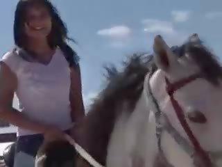 عالية الوضوح الإباحية أشرطة الفيديو. حصان الإباحية. الثلاثون حصان ...